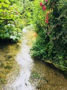 Rio Veules a su paso por el Pueblo